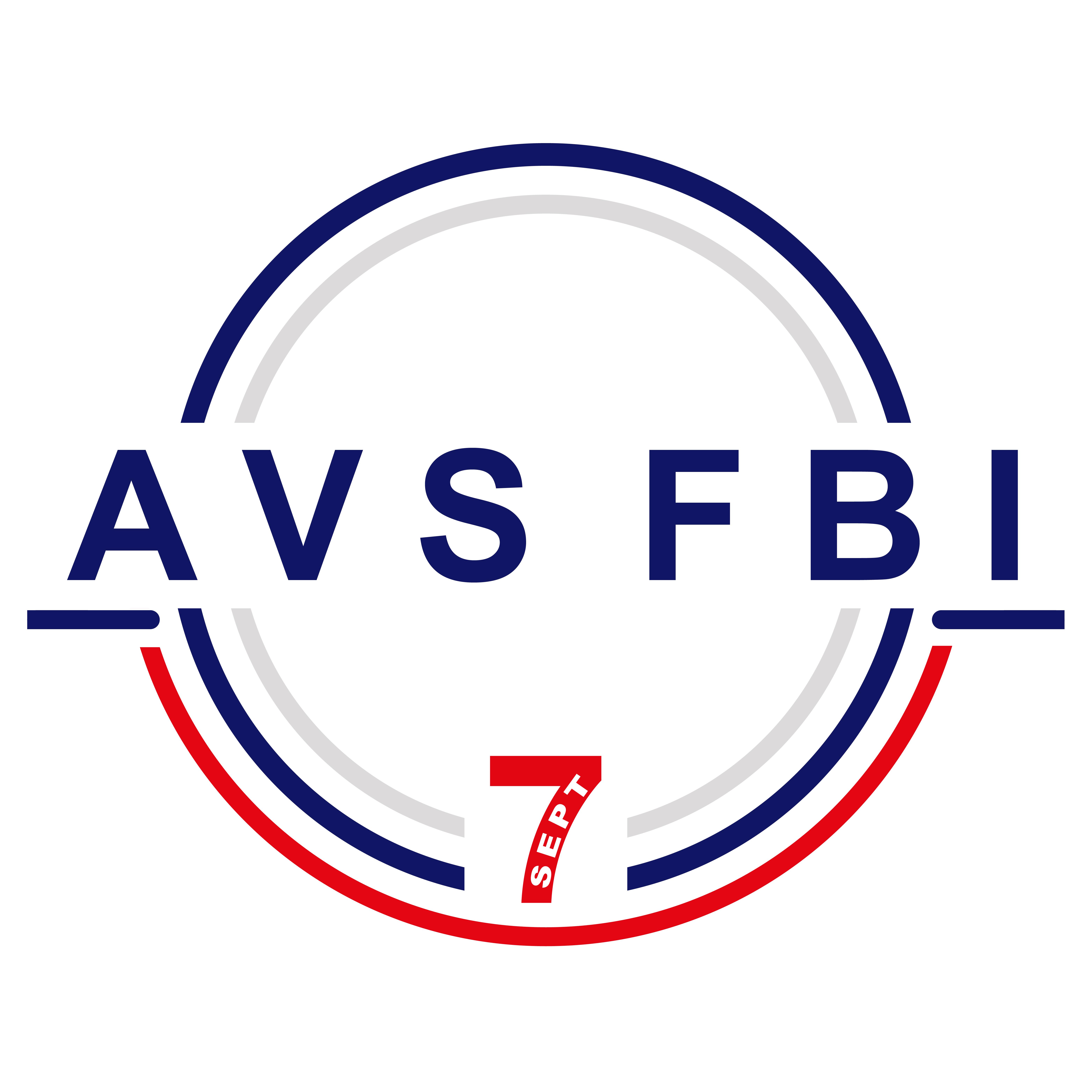 AVS FBI Pose habillage (feutres, molletons, soubassements) sur sécheuse repasseuse industrielle
